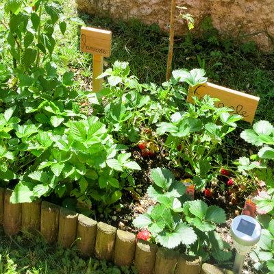 orto giardino casa poslen