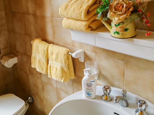 bagno appartamento gnomo mirtillo