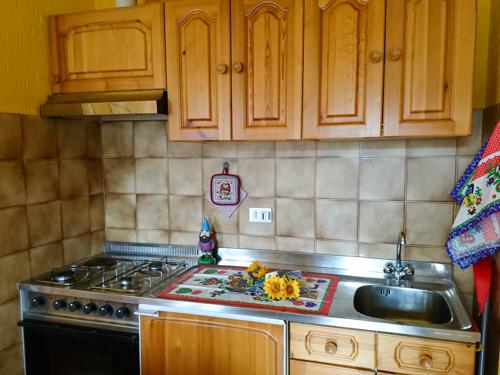 cucina appartamento gnomo mirtillo